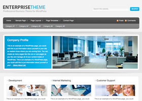 Enterprise WordPress design