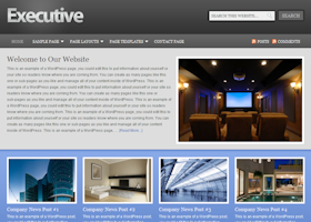 Executive WordPress design